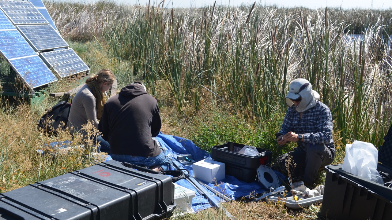 Setting up a portable eddy-covariance system to measure carbon and water flux in the San Francisco Delta. Portable solar panels provide power.