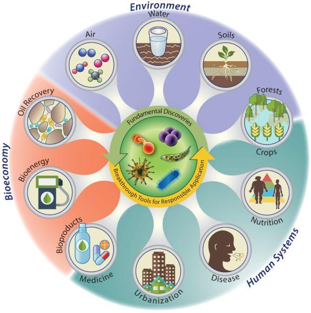 Bioeconomy, environment, human systems